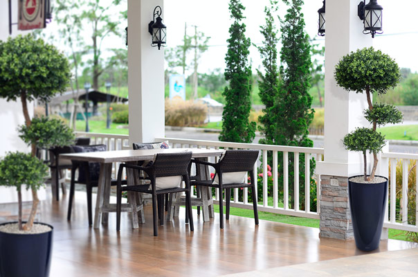 terrassi kunsttaimed