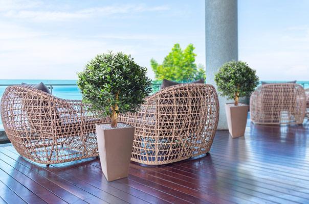 kunsttaim terrassile
