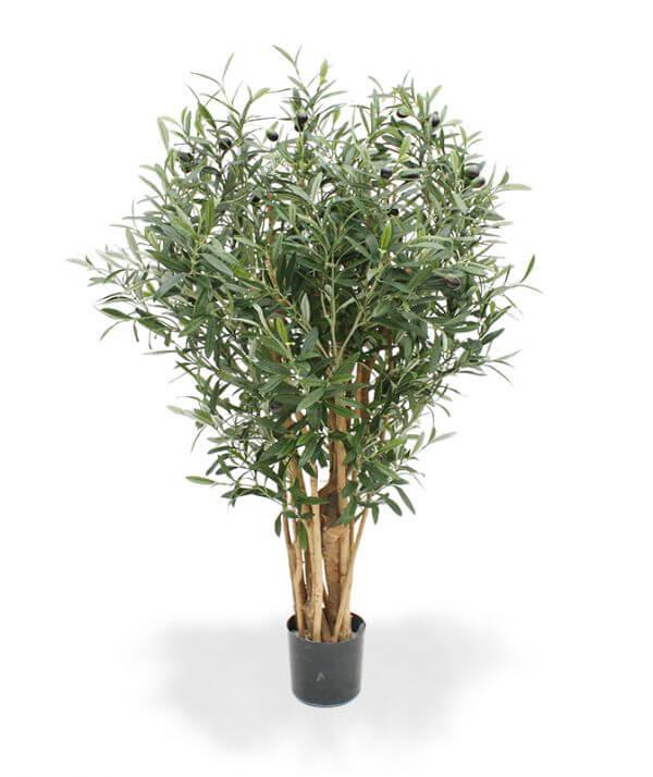 kunst-oliiv