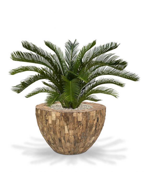 kunst-palmlehik