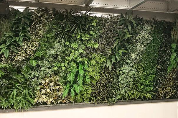Urban jungle roheline sein